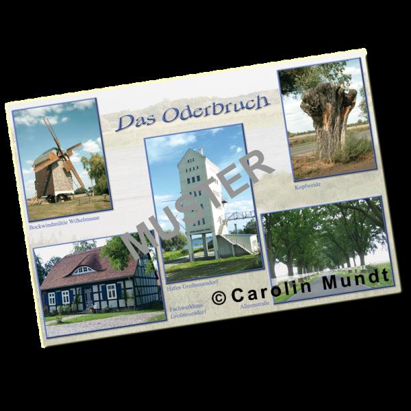 Postkarte Oderbruch